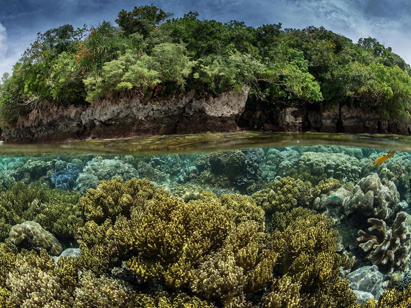 Polau Arrchipelago, Polau Arrchipelago Gezi Rehberi Mikronezya